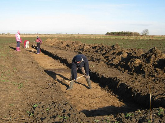 Volunteers start to define archaeological remains revealed in a trench opened with a mechanical excavator.