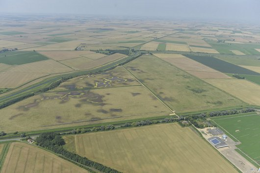 Willow Tree Fen from the air